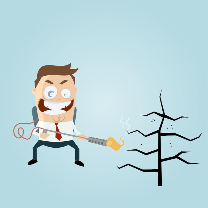 Unkrautbrenner und Abflammgeräte - auf die richtige Anwendung kommt es an... Quelle: www.fotolia.de - shockfactor.de